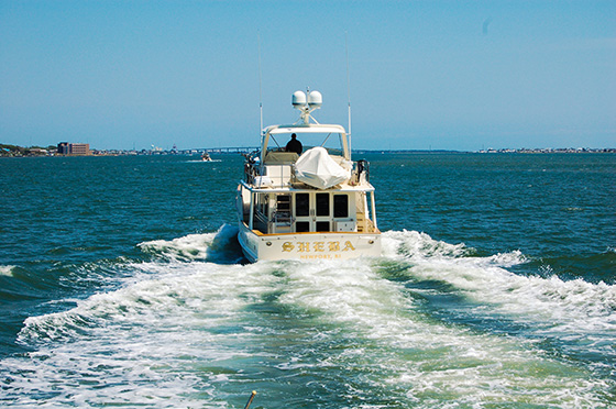 """Sheba"" - 2002 Fleming 55'