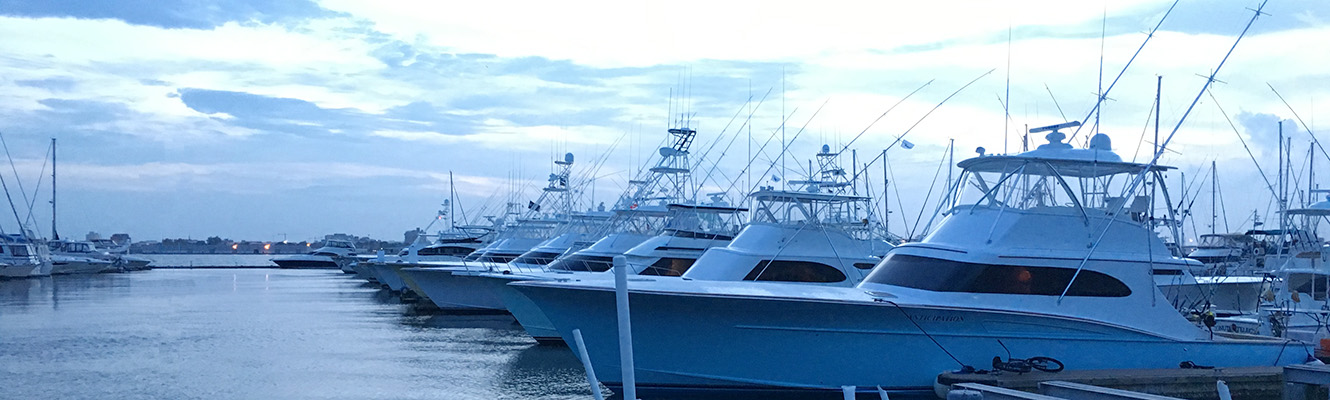 Photo of Charleston Marina