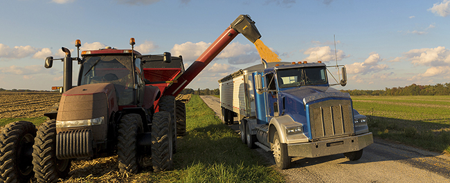 A red tractor with a grain cart unloading grain into a blue semi truck in a field